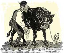 Мойщик быков