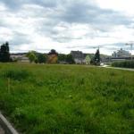 Пейзаж 1